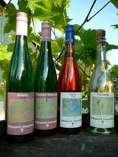 wijnvandassemus