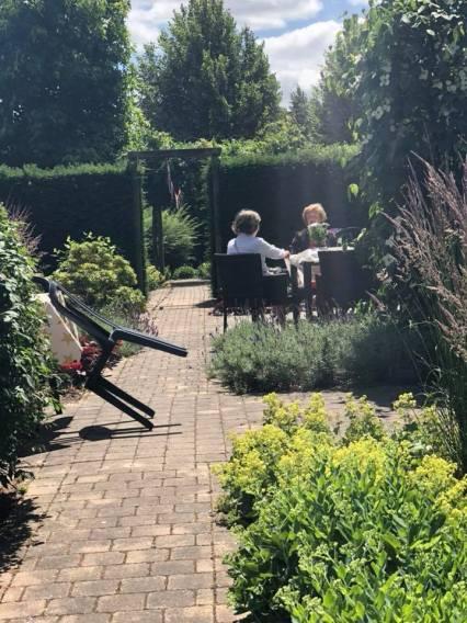 A wonderful garden